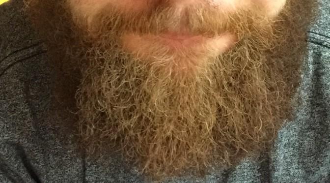 Beardnews #5